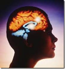 Omega 3 hjernen