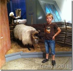 Vi møtte en vær på museet