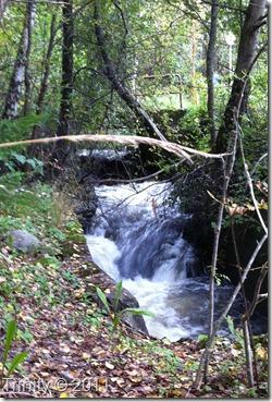 La ikke tankene dine være et fossestryk,men en stille kulp i elven
