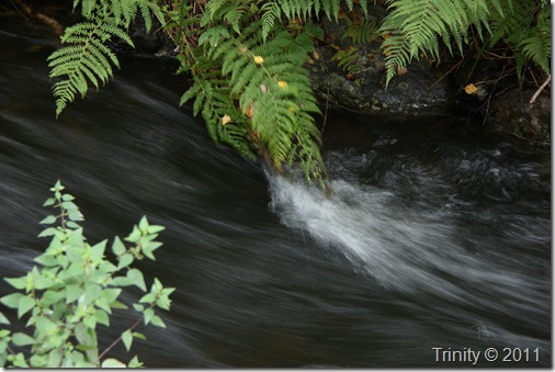 Det er bedre å flyte med elven enn å stritte imot