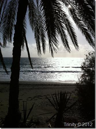 Å kunne sitte under en palme og nyte havets bølger slå mot stranden er noe av det som får meg til å føle gode følelser og tenke gode tanker