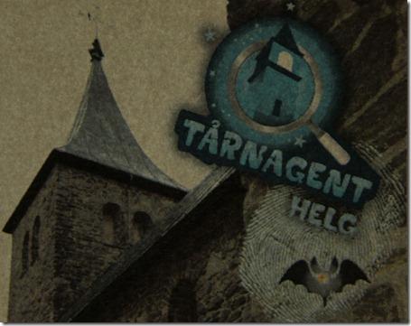 Er du klar for utfordringen? Tårnagent i kirken i en hel helg