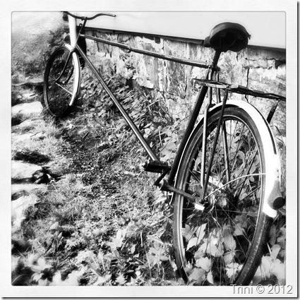 Jeg drømmer om en sykkel som er så perfekt at jeg kan sykle milevis i sommer